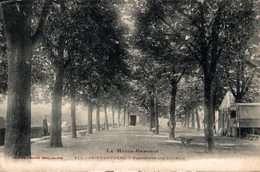 16233      ST GAUDENS   PROMENADE DES TILLEULS - Saint Gaudens