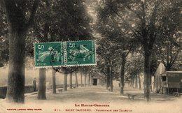 16234      ST GAUDENS   PROMENADE DES TILLEULS - Saint Gaudens