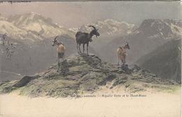 74  CHAMONIX CHEVRES SUR LES SOMMETS AIGUILLE VERTE  MASSIF DU MONT BLANC Editeur: JULLIEN FRERES Numéro:  JJ 3162 - Chamonix-Mont-Blanc