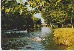 VILLENEUVE SUR YONNE L'Ile D'Amour - Villeneuve-sur-Yonne