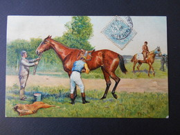 Cheval De Course Et Son Jockey - Gaufrée - Chevaux