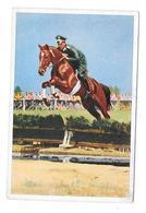 Olympia 1936 - BERLIN -  Hauptmann Von Stubbendorf - Trading Cards