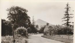 Ireland Postcard Wicklow Delgany Shugarloaf Mountain - Wicklow