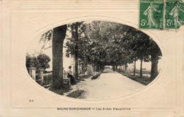 D33  BOURG- SUR- GIRONDE   Les Allees Alexandrine   .....  Carte à Cuvette - Frankreich