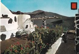 Espagne, Islas Canarias, Lanzarote, Montanas Del Fuego, Tinecheide - Lanzarote