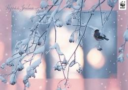 Postal Stationery - Reindeer - Bird - Bullfinch In Winter Landscape - WWF Panda Logo 2010 - Suomi Finland - Postage Paid - Ganzsachen