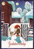 Postal Stationery - Bird - Bullfinch - Elf Feeding Cat - Cancer Foundation - Suomi Finland - Postage Paid - Finland