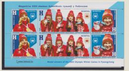 Belarus 2018 PyeongChang Olympic Games Souvenir Sheet MNH/** (H60) - Winter 2018: Pyeongchang