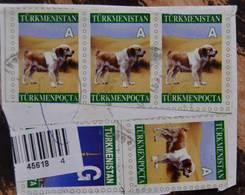 Turkménistan Chien Standard De La Faune Filet De 2004 éteint - Turkmenistan