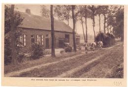Orig. Knipsel Coupure Magazine - Een Stenen Huis Heeft De Lemen Hut Vervangen Te Westerlo - 1931 - Unclassified