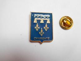 Superbe Pin's , Pétanque , FFPJP , Fédération De Charente - Bowls - Pétanque