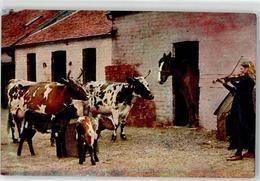 52497039 - Bauernhof In Irland Frau Geige Pferd Rind - Professions