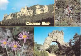 12 - Causse Noir - Multivues - Frankrijk