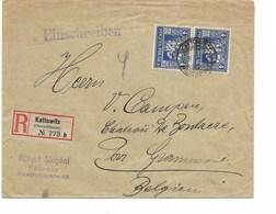 LE 0800. Paire N° Yv. 252 KATTOWITZ S/Lettre RECOMMANDEE Vers Château De Boulaere - GRAMMONT (B) - 1919-1939 République