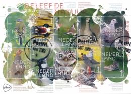 Nederland - 2020 - Velletje Beleef De Natuur - Boerenland Vogels - Echt Gebruikt - Oblitérés