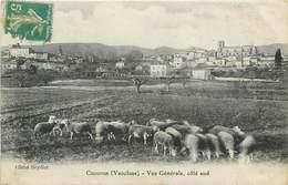 CPA 84 Vaucluse Cucuron Vue Générale Côté Sud - Troupeau De Moutons - France
