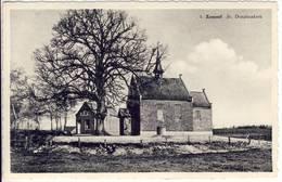 Zammel Geel St. Dimphnakerk - Geel