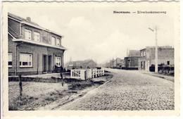 Nieuwmoer Kalmthout Zilverhoeksteenweg - Kalmthout