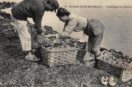 Environs LA ROCHELLE : Emballage Des Huitres - Tres Bon Etat - La Rochelle