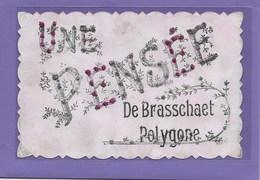 BRASSCHAAT : UNE PENSEE - Brasschaat