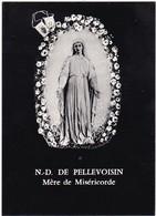 Image Religieuse : Image Pieuse : N. D. De PELLEVOISIN : Mére De Miséricorde  : Presbytère De Pellevoisin - Indre - - Devotieprenten