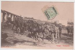 CPA - MAROC - TANGER - Caravanne - Tanger