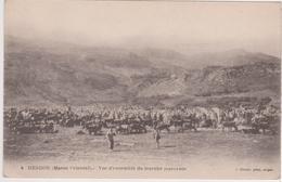 CPA - LE MAROC - DEBDOU - Vue D'ensemble Du Marché Marocain - Otros
