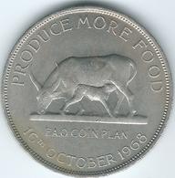 Uganda - 1968 - 5 Shillings - FAO - KM7 - Oeganda