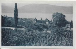 Veyrier - Vue Générale Et Lac D'Annecy - Editions De L'Hôtel DuMont-Baron Veyrier - Non écrite - Veyrier