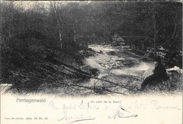 HERTOGENWALD (Eupen, Raeren, Jalhay) - Un Coin De La Soor - Oblitération De 1907 - Nels, Série 98, N° 53 - Eupen