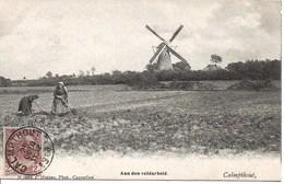 23 Calmpthout Kalmthout.  Aan Den Veldarbeid. Met Molen  Hoelen 1660 - Kalmthout