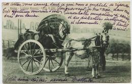1517 - Italie - ROME - COSTUME ROMANO - CARRO DI VINO - MARCHAND DE VIN   - BEL ATTELAGE - Circulée En1916 - Transports