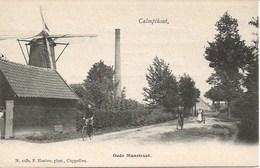 26 Calmpthout Kalmthout.  Oude Manstraat  Hoelen 1050 Met Molen - Kalmthout