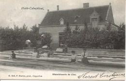 31 Calmpthout Kalmthout. Heide Blanchisserie De Cire. Hoelen 1513 - Kalmthout