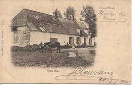 32 Calmpthout Kalmthout. Witte Hoef Heel Oude  Hoelen 56 - Kalmthout