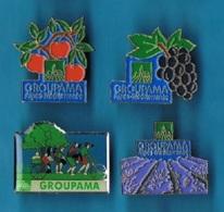 4 PIN'S //  ** GROUPAMA / ALPES - MÉDITERRANÉE / ORANGER / LAVANDIER / RAISIN / FAMILLE ** - Badges
