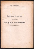 RELAZIONE DI PERIZIA PER  CAUSA INTENTATA DA IMPRENDITORE AGRICOLO A PROPRIETARIO DI FRANTOIO OLEARIO - 1916 - CORATO - Unclassified