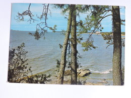 SAINT BREVIN L'OCEAN - Le Pointeau  Ref A0549 - Saint-Brevin-l'Océan