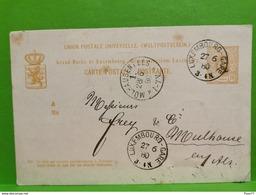 Entier Postaux, Luxembourg 1880 Envoye A Mulhouse - Interi Postali