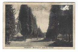 6194 - FRASCATI ROMA MONDRAGONE VIALE DEI CIPRESSI 1926 - Andere Steden