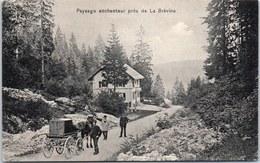 SUISSE - NEUCHATEL - Paysage Près De La Brévine. - NE Neuchâtel