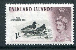 Falkland Islands 1960-66 Birds - 1/- Oystercatchers MNH (SG 202) - Falkland