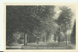 DE AK 1935 FRIEDRICHSRUH SACHSENWALD - Friedrichsruh