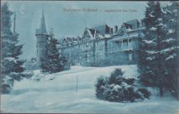 German Feldpost WW1: Postcard Bialowies, Russia - Jagdschloss Des Zaren From Kriegsgefangenen-Arbeiter-Bataillon - Militaria