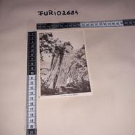 C-91832 ERITREA FAUNA USI E COSTUMI ZAD AMBA MONTE BIANCO PANORAMA - Eritrea