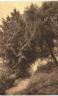 (BW12) Basse-Wavre Séminaire La Fausse-Eau Dans Le Parc - Wavre