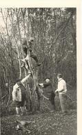 AVAIZE  -  Les Quatre Cerisiers  (Scène De Chasse En Forêt D'Avaize) - Lieux