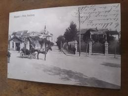Cartolina Postale 1913, Alassio, Viale Hamburg - Savona