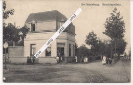 "ST.MARIABURG-BRASSCHAAT ""BOSCHKAPELLELEI"" - Brasschaat"
