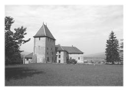 SAINT-PIERRE-EN-FAUCIGNY - Château De Rumilly-sous-Cornillon - Autres Communes